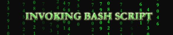 Invoking bash